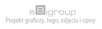 eBigroup.pl